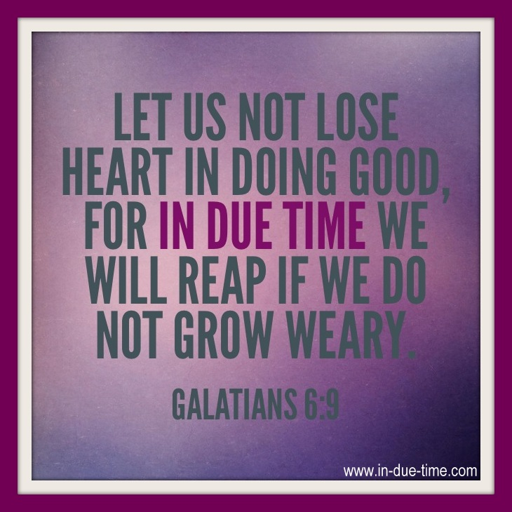 Image result for Keep sowing because in due season, you will reap the bountiful harvest with a song of joy in your heart!