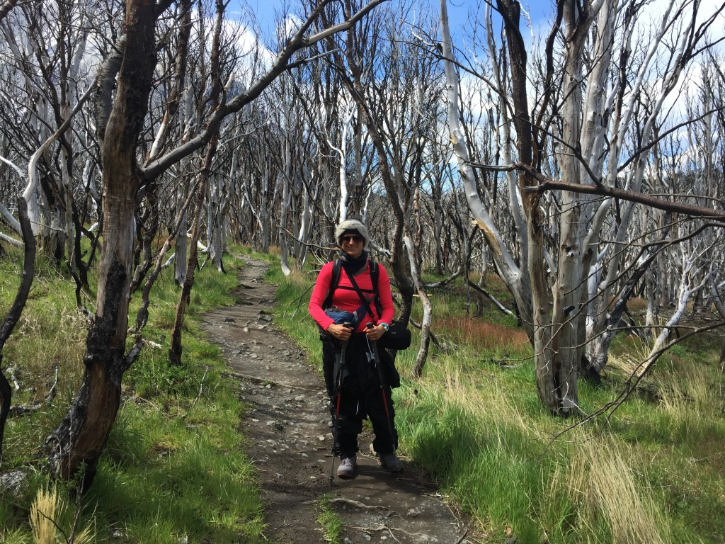 Day 1 -  W Trail Hike on Torres Del Paine