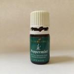 Essential Oils: Part 4: Peppermint