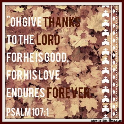 Give Thanks - Psalm 107 - In Due Time Blog