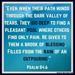 Psalm 84:6 – Brook of Blessing #131
