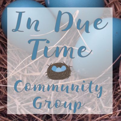 In Due Time Devotional Community Group