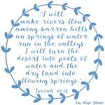 Isaiah 41:18 Pools of Water #177