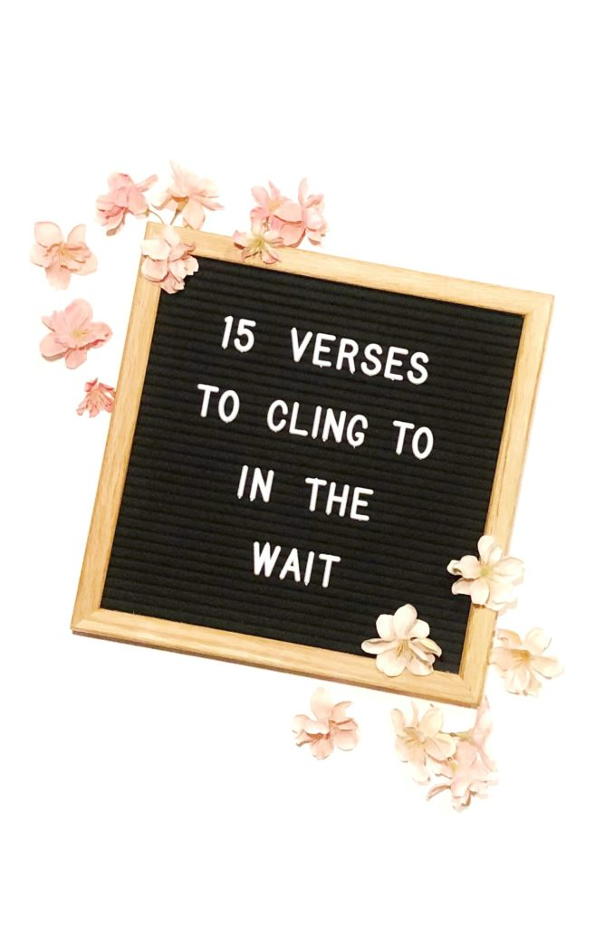 15 Verses to Cling to In The Wait - In Due Time blog